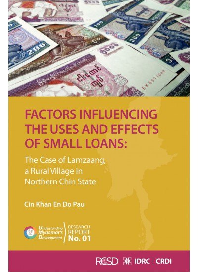Factors Influencing the Uses and Effects of Small Loans
